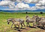 10 Days Tanzania Zanzibar Bush Beach Luxury Safari