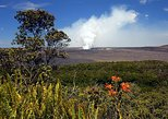 Shore Excursion - Hawaii Volcano Tour
