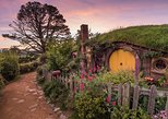 Hobbiton Movie Set Small Group Tour with Kiwi Style Picnic Lunch (Return Trip)