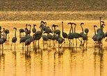 3 Days Manyara Crater Tarangire Safari Tours