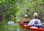 Mangroves Kayaking Full Day Myeik Tour