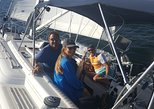 See dolphins while sailing in comfort on Tampa Bay and the Gulf of Mexico