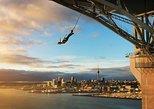 Auckland Harbour Bridge Bungy Jump Experience