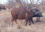 4-Days Great Amboseli, Tsavo East & West Safari Kenya