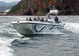 Knysna Eco Marine Tour 1.5hr