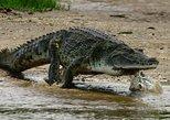 3 days Murchison Falls safari with Big 5 sightseeing