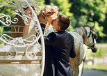 Romantic (Proposal - Anniversary) Central Park Horse-Drawn Carriage Tour