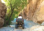 Box Canyon ATV Tour in Florence