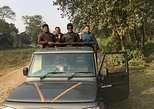 Wildlife Adventure in Chitwan Nepal