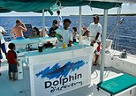 Full-Day Bénitiers Island and Dolphin Watching Cruise with Lunch