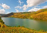 Full Day Douro Valley Shuttle Tour with Lunch and Wine Tasting from Porto