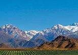 Mendoza para visita privada ao Vale de Uco com almoço e degustação de vinhos. Mendoza, ARGENTINA