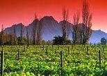 Cape Winelands & The Garden Route - 5 Days