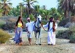 Arabian Morning Horse Riding & Stable Tour