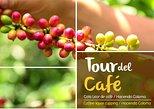 Full-Day Tour to Coffee Plantation -Coloma Farm- from Bogota