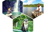 4 - Hour Grand Etang National Park & Annandale Falls Tour