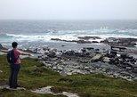 Coastal Headland Hiking Tour
