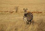 12 Days Kenya Explorer Safari