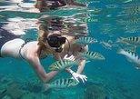 Bali Snorkling Blue Lagoon & Tanjung Jepun