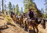 Ruby's Horseback Adventures All Day Ride