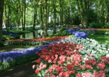 Keukenhof Private Tour with Private Driver-Private Guide-Private Car