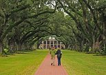 EXPERIENCE OAK ALLEY PLANTATION! (ALL INCLUSIVE PRIVATE TOUR) FROM NEW ORLEANS