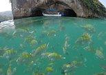 Tour privado para practicar snorkel en los arcos