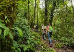 Ecuador Cloud Forest 5 Days Hiking Tour