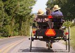 Premium Amish Country Tour including Amish Farm and House