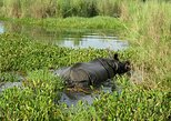 2 Nights 3 Days All Inclusive Chitwan Safari Tour from Kathmandu