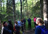 Nature excursions in the Finnish lakeland