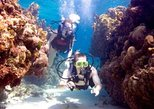 No Certification Required Guided Scuba Diving Tour