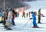 [Private Tour] Nami Island & Ski (Lunch, Ski Lesson, Equip & Clothing Included)