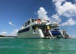 Australia & Pacific - Australia: Eco Marine Safari - Boom netting & Snorkeling Moreton Island - Fortitude Valley