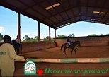 Pony Ride (20 min)