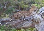 Private Safari at Yala National Park