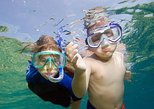 Private Snorkeling to Egmont, Outback, and Shell Key Islands
