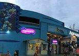 Great Wheel & Cancun Interactive Aquarium