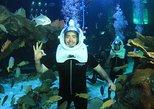 Aquarium Trek