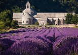 Lavender Route Small-Group Guided Day Trip from Avignon
