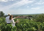 Small-Group Day Tour from Beaune including Wine Tastings and Lunch