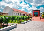 Full-Day Shabo Wine Culture Center Private Tour in Odessa