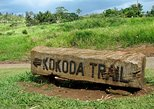 Private Tour: Full day Kokoda Track Hike