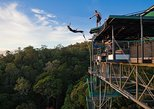 Bungy Jump and Giant Jungle Swing