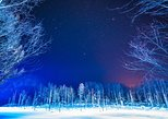Asahiyama Zoo, Fascinating Aoi-Ike Light Up and Shirohige Falls in Winter!