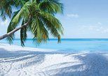 Caribbean - Cayman Islands: Full Grand Cayman Island Tour