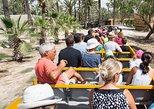 Rio Safari Elche with Transport from Benidorm