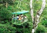 Colon Panama: Aerial Tram and Miraflores Locks