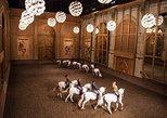 Equestrian show La Voie de l'écuyer 2019