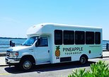 Charleston City Sightseeing Tour via Bus